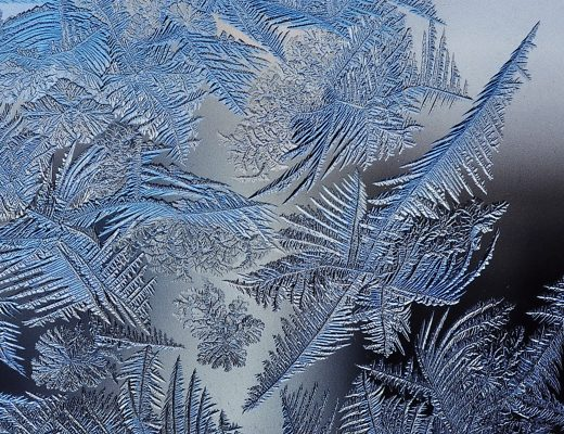 types of cold – poem