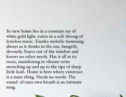 plant – poem
